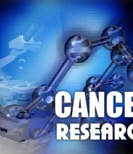 Nov 17. 2011 | Hub For Cancer Research