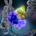 Nov. 2012 | Beckman Symposium on DNA Damage Response and Cancer Therapeutics